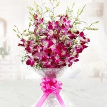 6 Purple Orchids Bunch